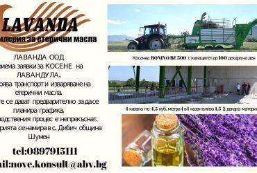 Лична: Дестилерия за етерични масла – Косене – Транспорт – Дестилация